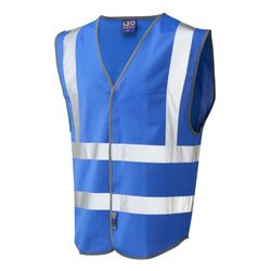 Hi Vis Warden Vest Rear Print Royal